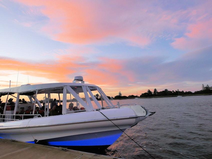 Brisbane River boat hire Cobia