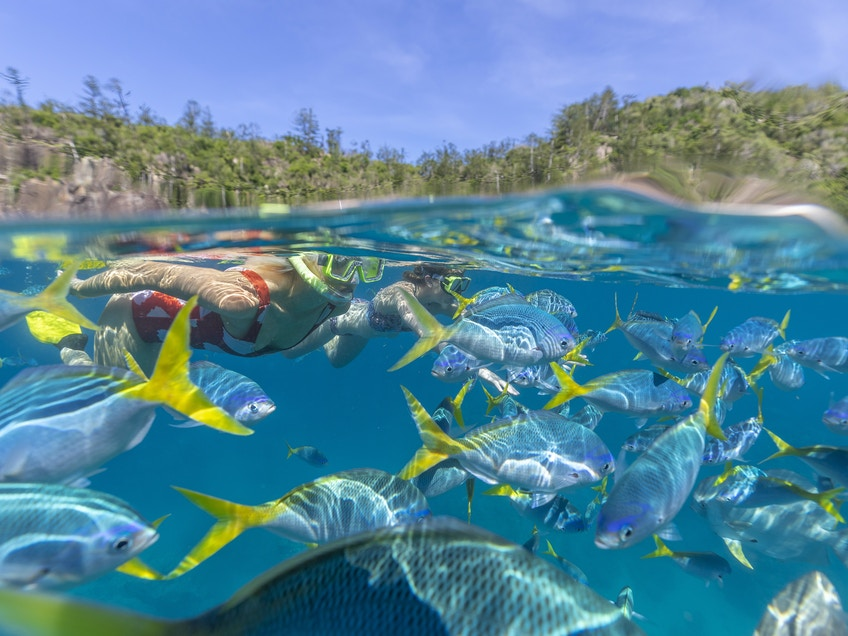 The Whitsundays boat hire Tourism and Events Queensland
